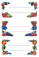 Haushalts-Etiketten Einmachgläser, 76 x 35 mm, bunt